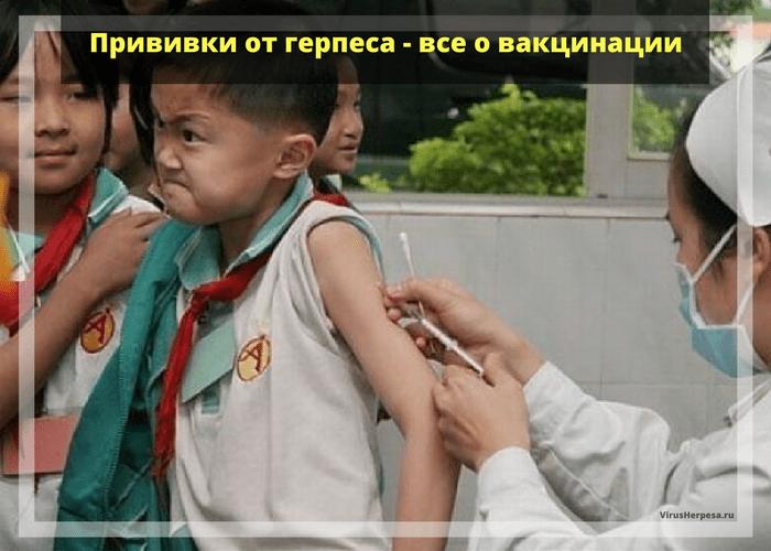 Прививки от вируса герпеса
